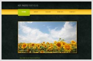 Hot Photo Portfolio is a Portfolio WordPress Theme