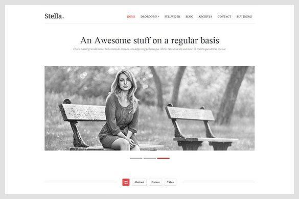 Stella is a Portfolio WordPress Theme