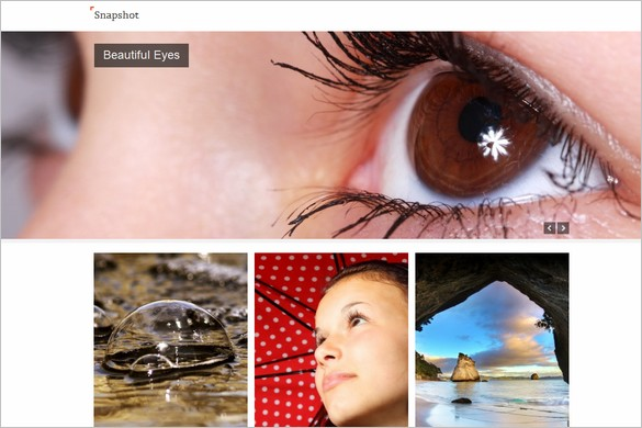 Snapshot is a free Photography WordPress Theme by SiteOrigin
