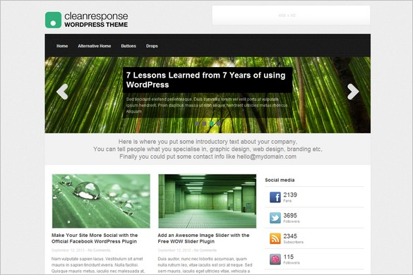 Clean Response is a free WordPress Theme by themefurnace