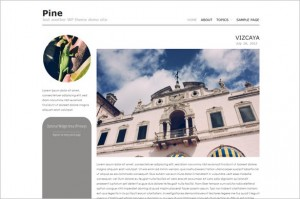 Pine is a free WordPress Theme