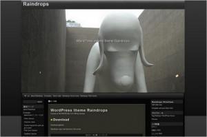 raindrops is a free WordPress Theme