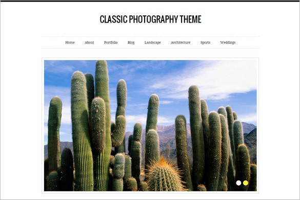 Classic Photography is a free WordPress Theme by Vandelay Design