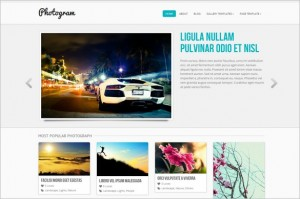 Photogram is a free WordPress Theme by ColorLabs