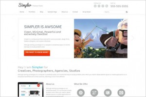 Simpler is a WordPress Theme by ThemePURE