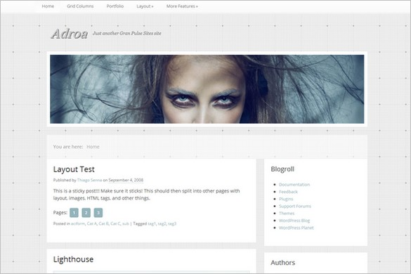 Adroa is a free WordPress Theme