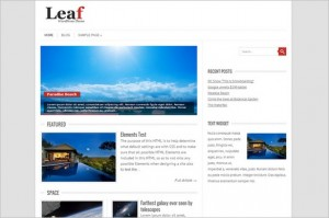 Leaf is a free WordPress Theme by Fatboy Themes