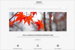 Touch is a portfolio WordPress Theme