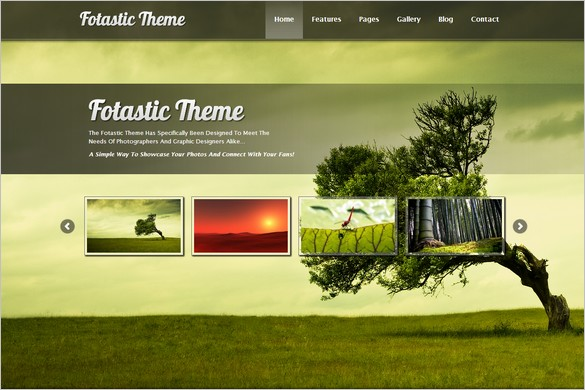 Fotastic is a WordPress Photography Theme