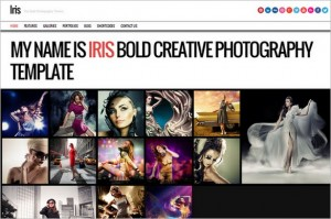 Iris is a Photography WordPress Theme