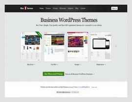BizzThemes WordPress Themes