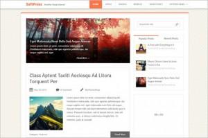 SoftPress is a magazine WordPress theme from MyThemeShop