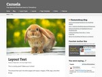 Cazuela is a free WordPress Theme