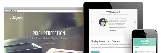 Hayden Portfolio WordPress Theme by Theme Trust