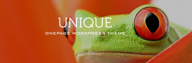 Creative and Unique One Page WordPress Themes
