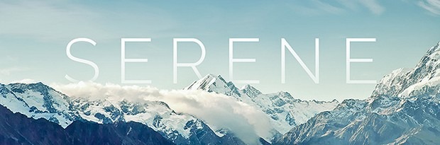 Serene Free WordPress Theme from Elegant Themes