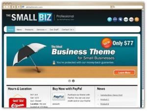Set Up Small Business Website Using WordPress
