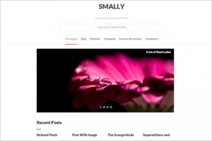Free Responsive WordPress Themes - Smally