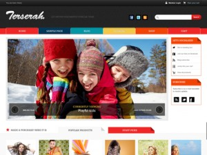 Terserah Premium WordPress Theme