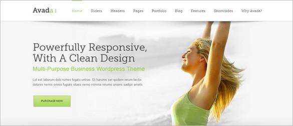 Usable WordPress Themes - Avada