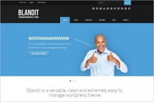 Outstanding WordPress Themes - Blandit