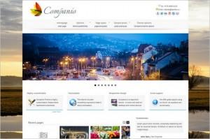 Outstanding WordPress Themes - Companio