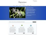 WordPress Themes Releases- Expressions