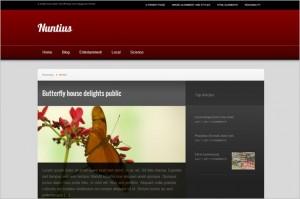 Nuntius is a free WordPress Theme