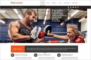 Procreativity outstanding WordPress Theme