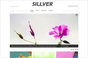 Sillver is a free WordPress Theme