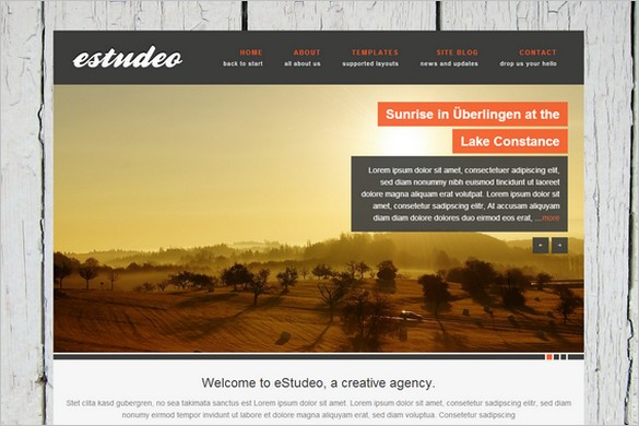 Best Free WordPress Themes - eStudeo