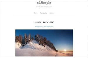 tdSimple is a free WordPress Theme