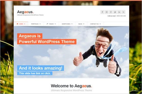 Top Selling WordPress Themes - Aegaeus