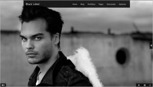 WordPress Video Themes - Black Label