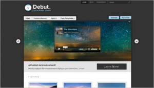 WordPress Video Themes - Debut