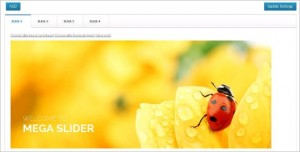 WordPress Plugins - Mega Slider
