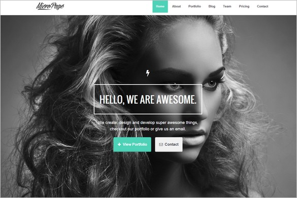 One Page WordPress Themes - MicroPage