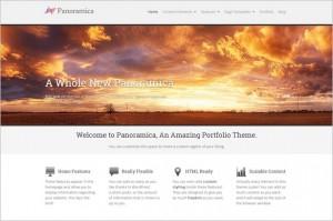 Professional WordPress Themes - Panoramica