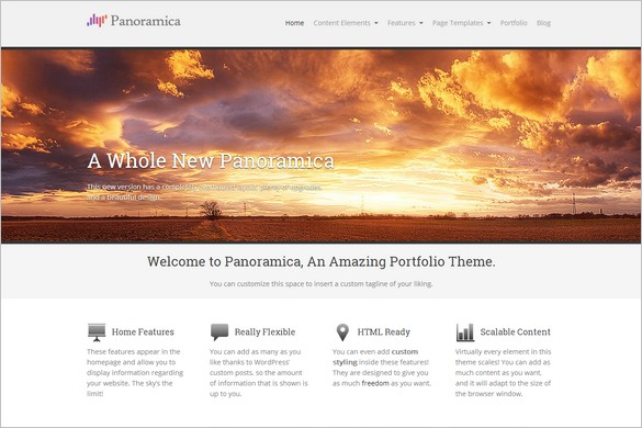 Professional WordPress Themes - Panoramica