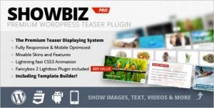 WordPress Plugins - ShowBiz Pro