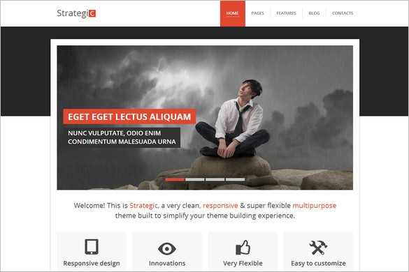 Top Selling WordPress Themes - Strategic