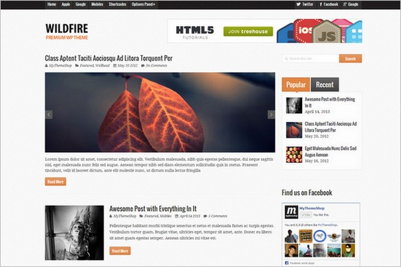 Wildfire is a WordPress Magazine Theme