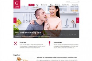 Quality WordPress Premium Themes - G Artic