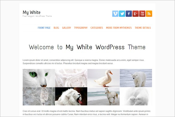 Free Exciting WordPress Themes - My White