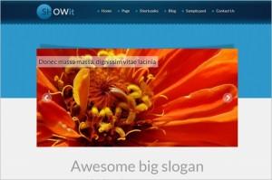 Quality WordPress Premium Themes - SHOWit