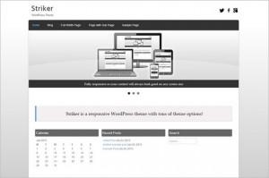 Free Exciting WordPress Themes - Striker