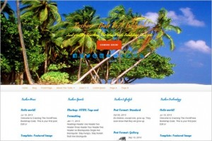 Free Exciting WordPress Themes - Tashan