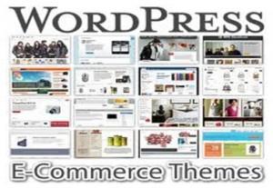 WordPress Increasing Popularity