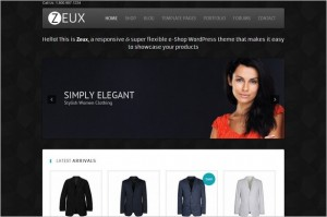 Free Exciting WordPress Themes - Zeux