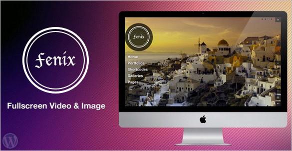 Eye-Catchy WordPress Themes - Fenix